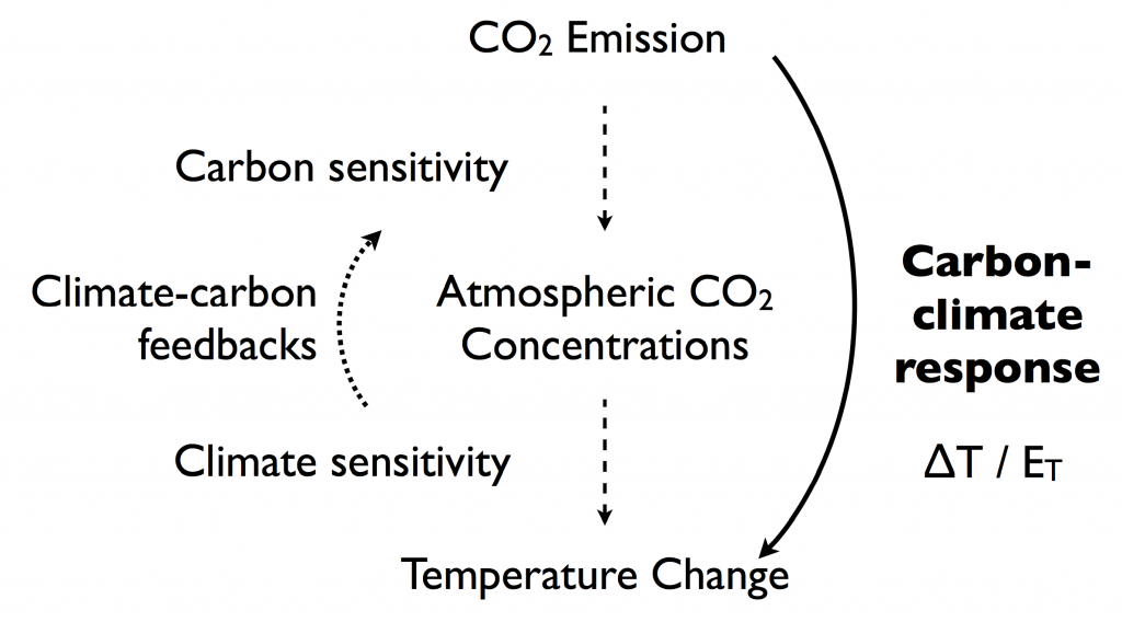 Carbon-Response